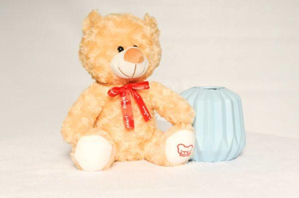 Angel Heart Beat Teddy Bear